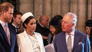 4,5 Millionen Euro: Prinz Charles zahlt für Sussex-Security!