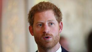 """Prinz Harry bei der Benefizveranstaltung """"WellChild"""" im Buckingham Palast"""