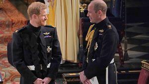 Weihnachtskonferenz: Harry und William haben wieder Kontakt