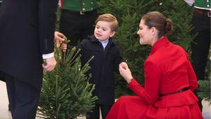Drollig: Prinz Oscar sucht Mini-Tanne für die Familie aus