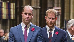 Wegen Harry? Prinz William beendet 20-jährige Freundschaft