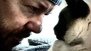 Social-Media-Katze Ollie ist tot: Ricky Gervais trauert