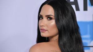 In Box-Nacht: Wetten über Demi Lovatos Boobs abgeschlossen!