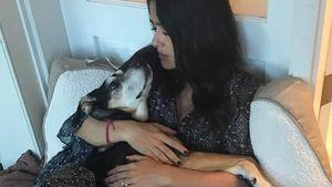 Abschied! Salma Hayek trauert um ihre 18 Jahre alte Hündin
