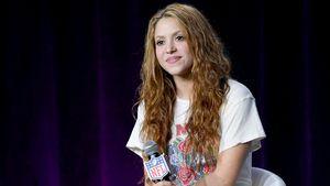 """Shakira wurde von Wildschweinen """"angegriffen und ausgeraubt"""""""
