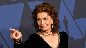 Mit 86 Jahren: Sophia Loren könnte bald Oscar-Rekord brechen