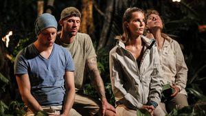 """""""Survivor"""" ein Flop? Show wird ab sofort nachts gesendet"""