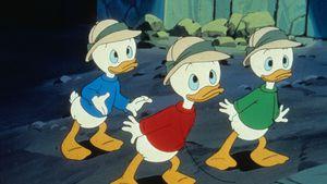"""Kultserie bei Disney+: Kennt ihr diese """"DuckTales""""-Funfacts?"""