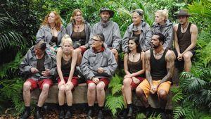 Staffel-Battles: 27 Camper im Sommer-Dschungel!