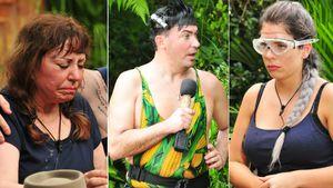 IBES 2018: Diese Dschungelcamper polarisieren auf Twitter
