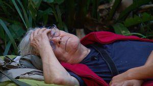 Nach Dschungel-Sex-Talk: Tommi Pipers Ehe steht vor dem Aus!