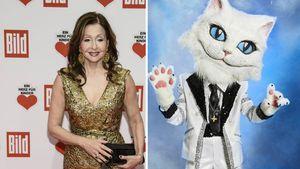 """The Masked Singer""-Katze: Passen Tipps zu Vicky Leandros?"