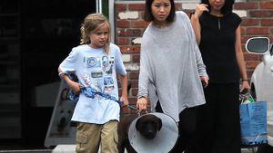 Vivienne Jolie-Pitt: Ein Hündchen gegen Scheidungskummer?