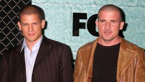 """Prison Break"": TV-Comeback der heißen Knastbrüder"