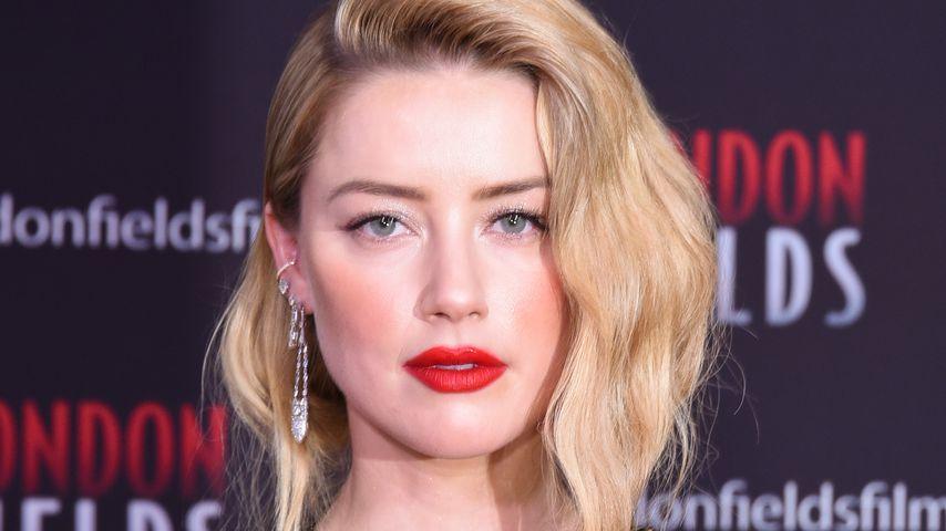Mit Momoa-Warze: Amber Heard sagt Nippel-Netzverbot Kampf an