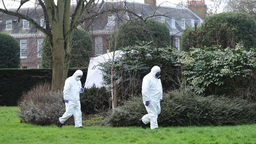 Horror-Tod: Brand-Opfer vom Kensington Palace identifiziert!