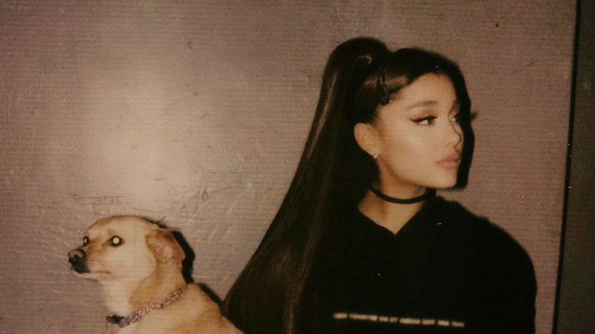 Ariana nostalgisch: Hund ist einzige Konstante ihrer 20er!