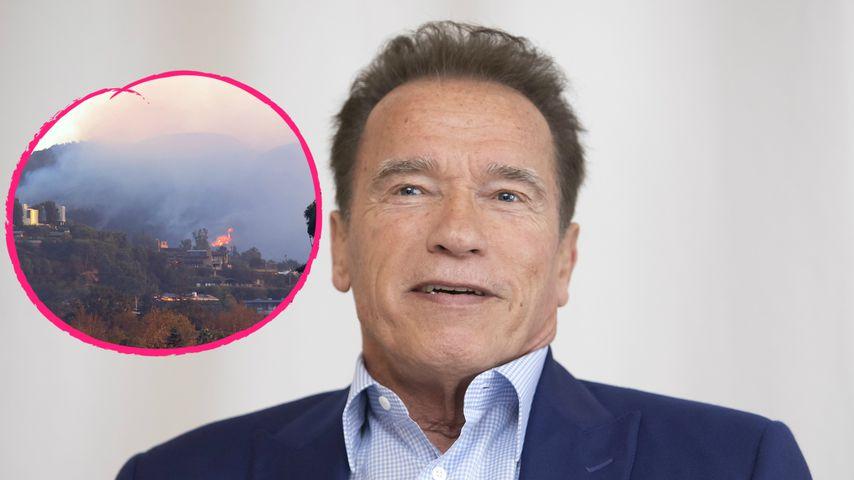 Kalifornische Waldbrände: Arnold Schwarzenegger evakuiert