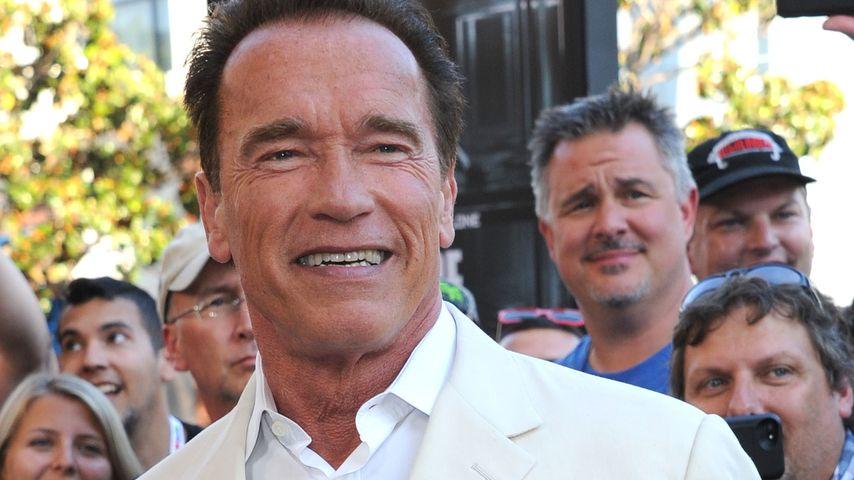 Schwarzenegger: Millionen-Deal für Bier-Werbespot