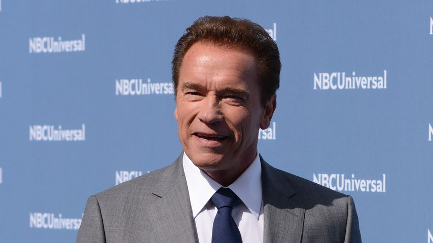 Elefanten-Attacke: Arnold Schwarzenegger geht die Düse!
