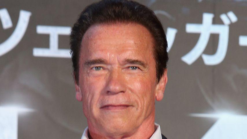 Arnold Schwarzenegger im Juli 2015