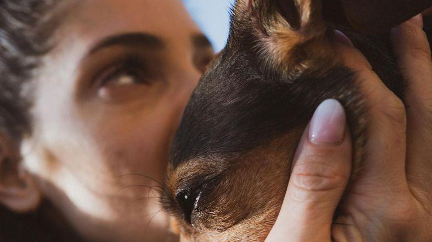 Ashley Greene und ihr Hund