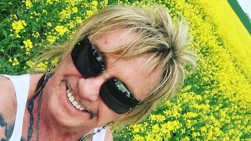 Dank Hypnose: Bert Wollersheim hat Zigaretten abgeschworen!
