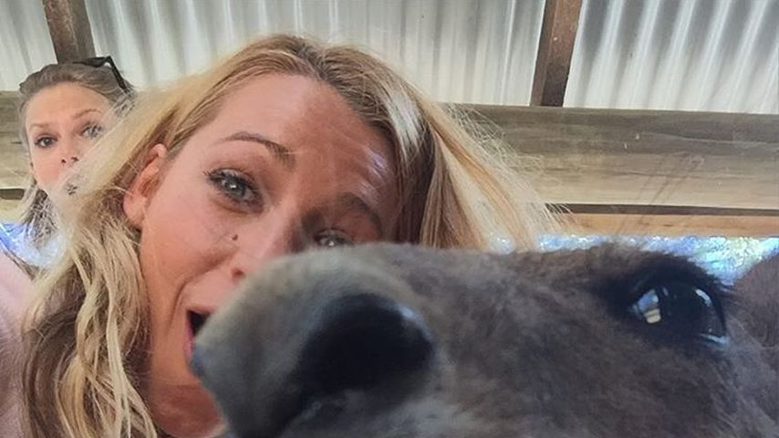 Känguru-Selfie mit Taylor Swift (hinten) und Blake Lively in Australien