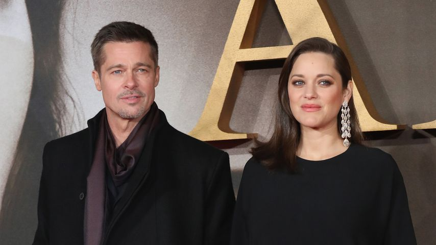 Schockmoment! Brad Pitt auf Red Carpet attackiert