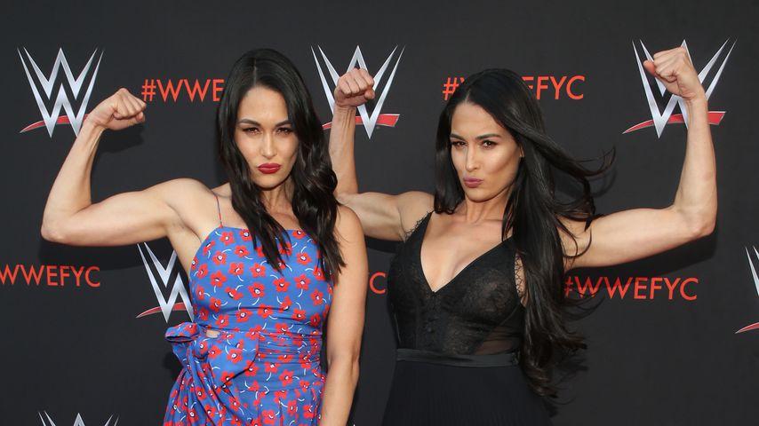 Brie und Nikki Bella, Reality-Stars