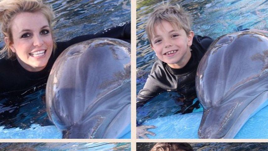 Britney Spears: Delfin-Pics sorgen für Shitstorm