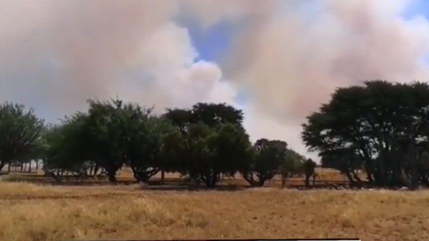 Buschfeuer in Namibia