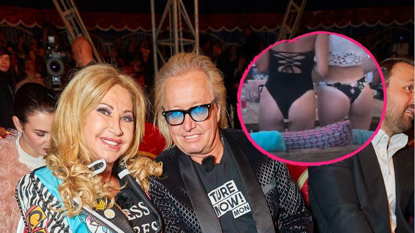 So denkt Carmen Geiss über Roberts Clips von Bikini-Girls!