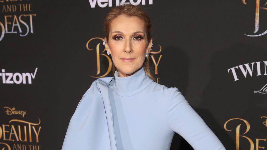 Sängerin Celine Dion