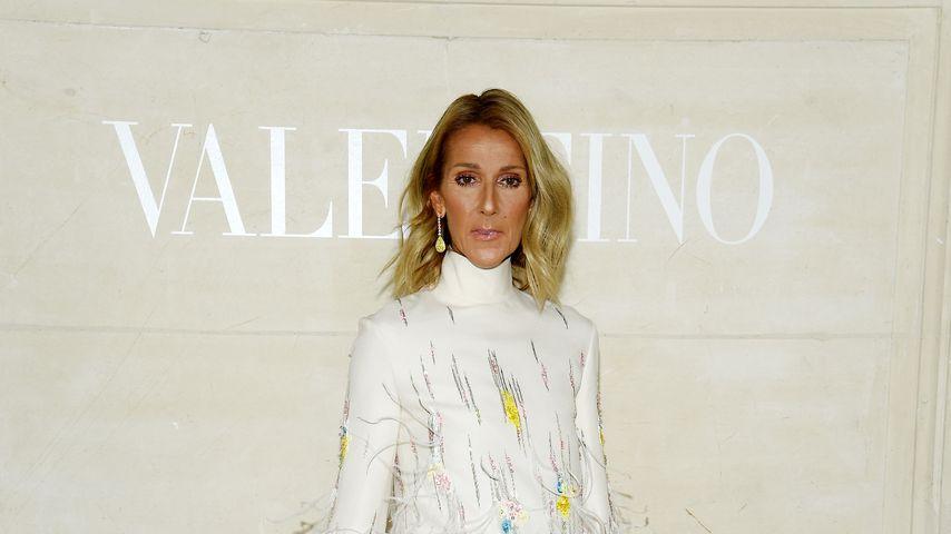 Céline Dion, Musikerin