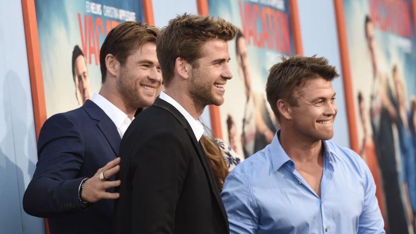 Chris, Liam und Luke Hemsworth bei einer Filmpremiere im Juli 2015