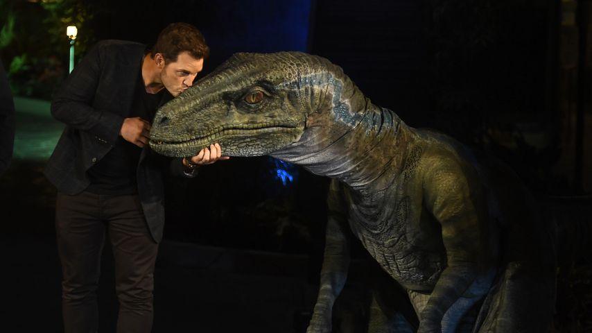 """Chris Pratt bei der Eröffnungsfeier von """"Jurassic World-The Ride"""" in den Universal Studios Hollywood"""