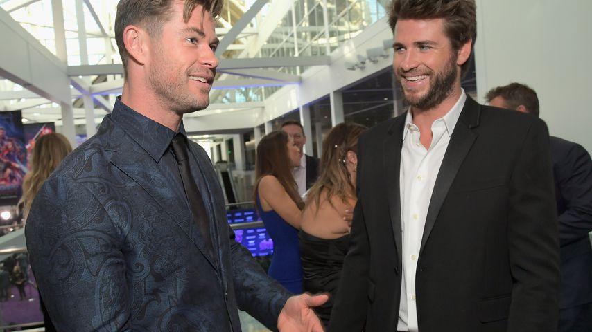 Chris und Liam Hemsworth im April 2019