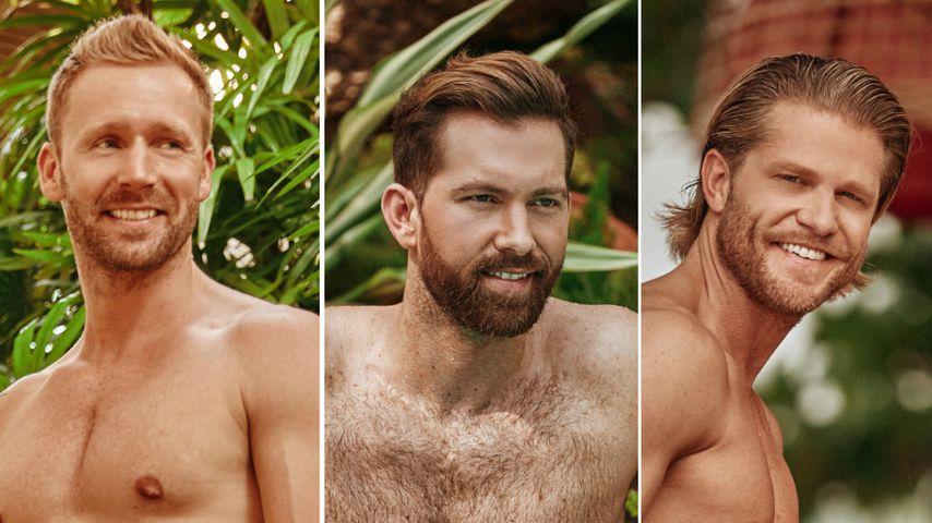 """""""Keine Lippen"""": Scherz-Beef bei """"Bachelor in Paradise""""-Jungs"""