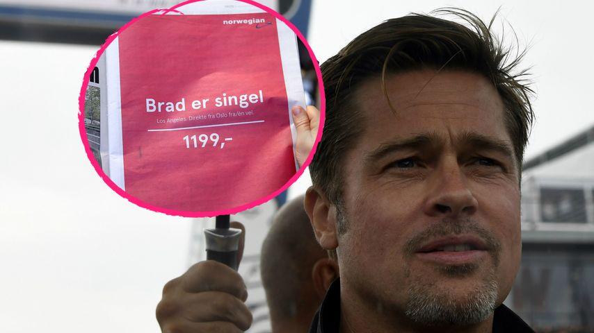 Ab zu Brad Pitt: Airline wirbt lustig mit seinem Ehe-Aus!