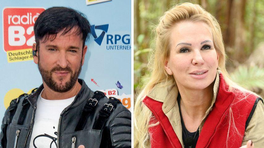 """""""Meine Ex lügt"""": Wendler sagt, er zahle Claudia Unterhalt"""