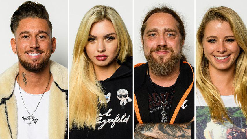 Collage: Mike Heiter, Natalia Osada, Martin Kesici und Saskia Atzerodt