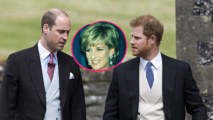William und Harry: So bewegend wird die neue Lady-Di-Doku