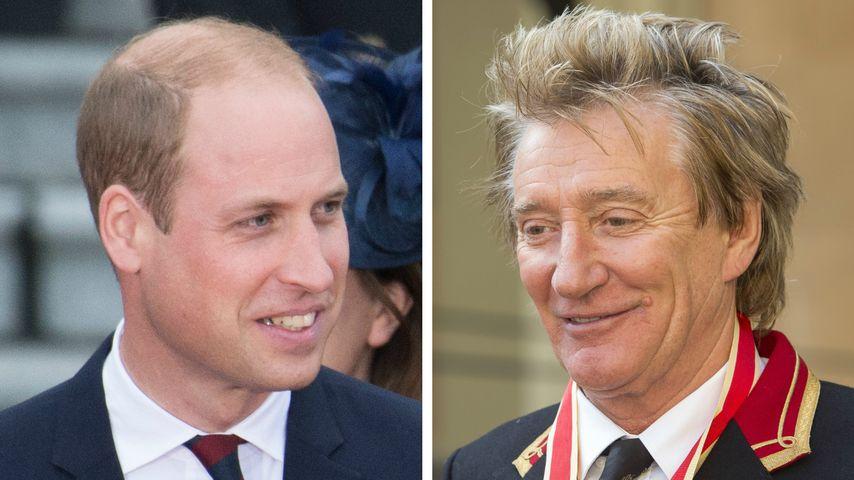 Riesen Ehre: Prinz William schlägt Rod Stewart zum Ritter!