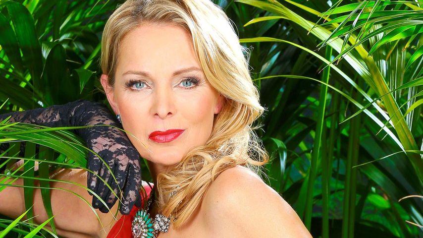 Corinna Drews Dschungel