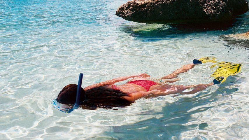 Gewinnt eine Reise auf die Recall-Insel Curaçao!