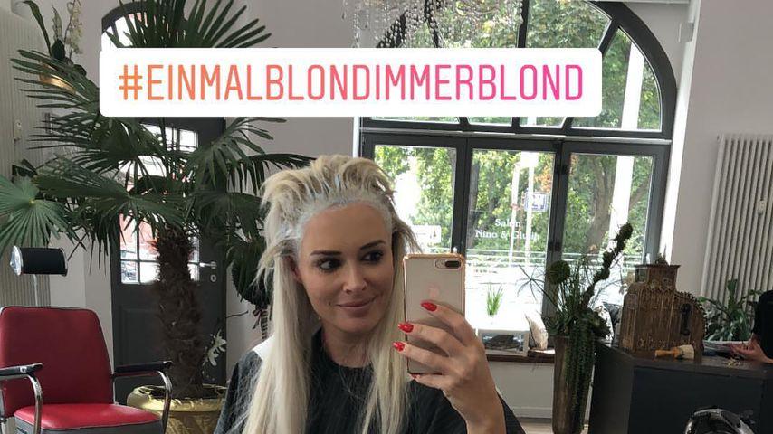 """""""Einmal blond, immer blond"""": Doch kein neuer Look für Dani!"""