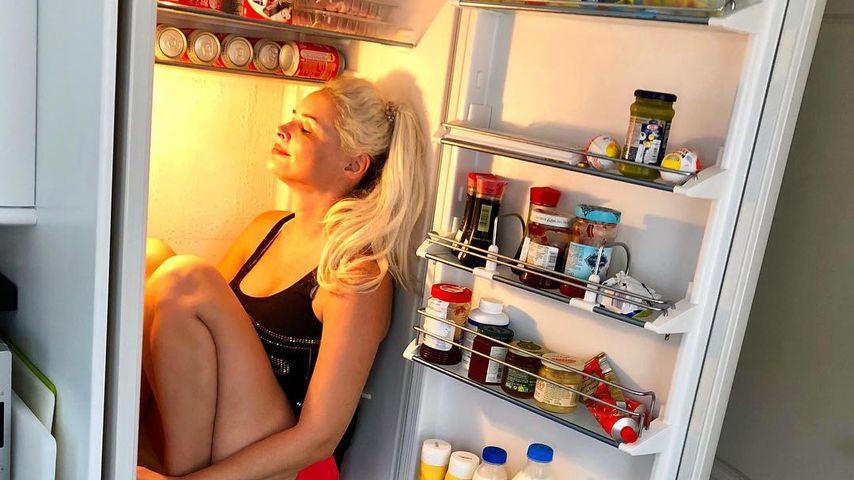 Katze im Kühlschrank: Daniela hat einen neuen Schlafplatz