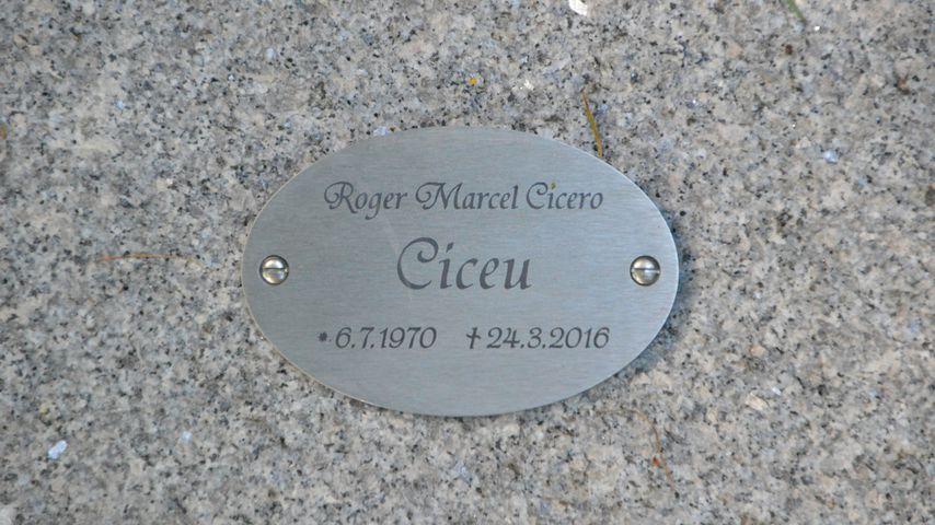 Das Grab von Musiker Roger Cicero auf dem Ohlsdorfer Friedhof in Hamburg