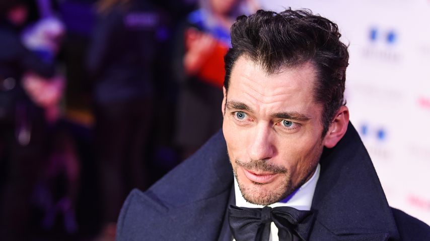 David Gandy bei der Battersea Dogs & Cats Home Collars & Coats Gala